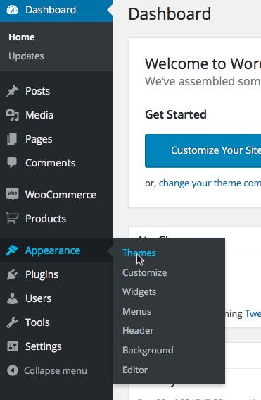 WordPress Theme Installtion